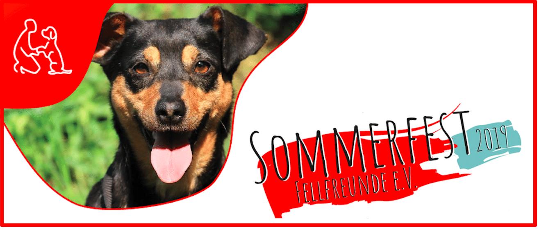 Sommerfest Fellfreunde